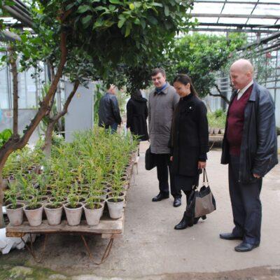 Національний семінар на тему «Стале вирощування біоенергетичних культур на малопродуктивних землях України» в рамках проекту SEEMLA міжнародної наукової програми Горизонт 2020